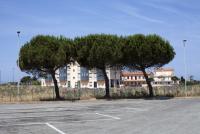 http://simonanstey.com/files/gimgs/th-72_Tuscany2017_MG_0861_v2.jpg
